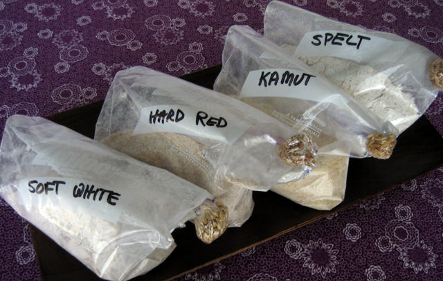 Various ground flours: Soft White, Hard Red, Kamut, Spelt