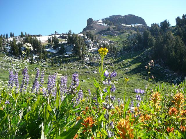 Nick and Nancye's hike near Angels Camp