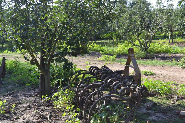 Farm implements at rest
