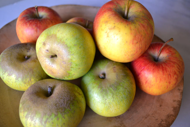 Newtown Pippin and Pinova apples