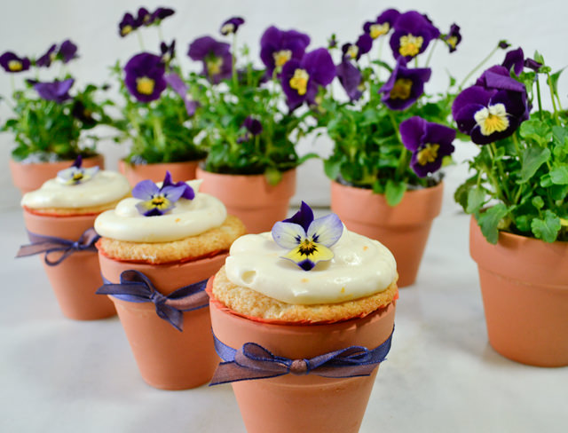 Blackberry mandarin cupcakes with violas