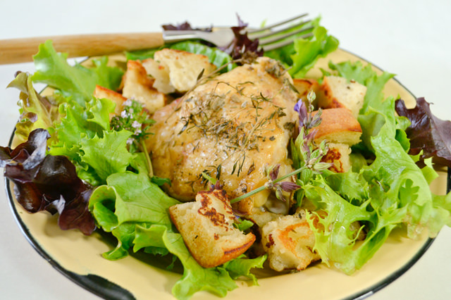 Chicken and bread salad with heritage lettuces
