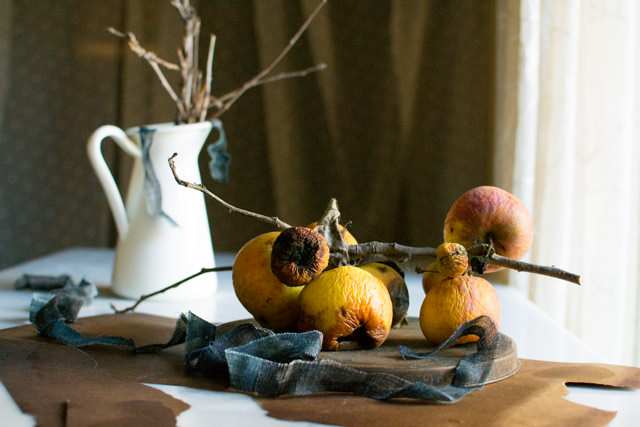 Fuji Apples on Branch