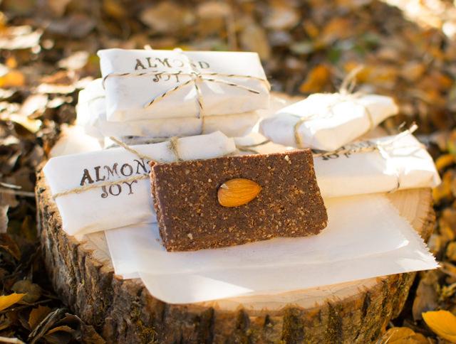 Almond Joy Energy Bars