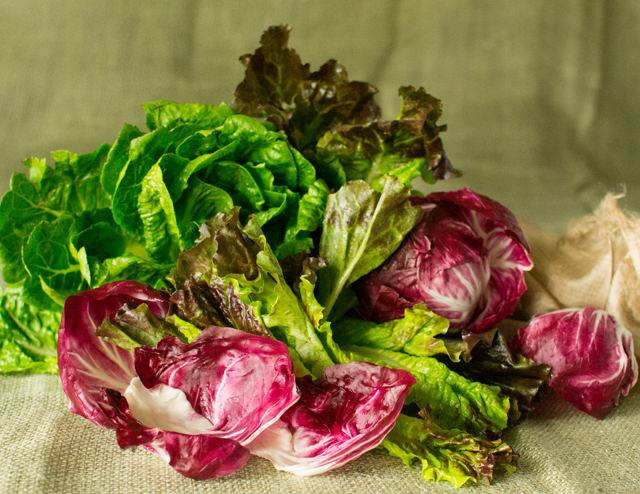 The Three R S Of Salad Romaine Red Leaf And Radicchio